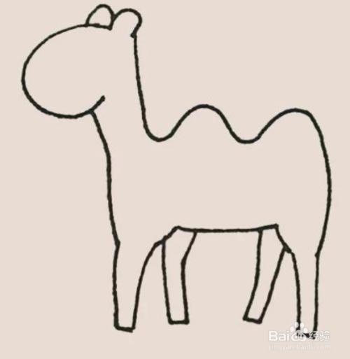 沙漠骆驼简笔画