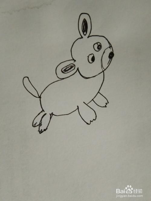 如何画简笔画小花狗?