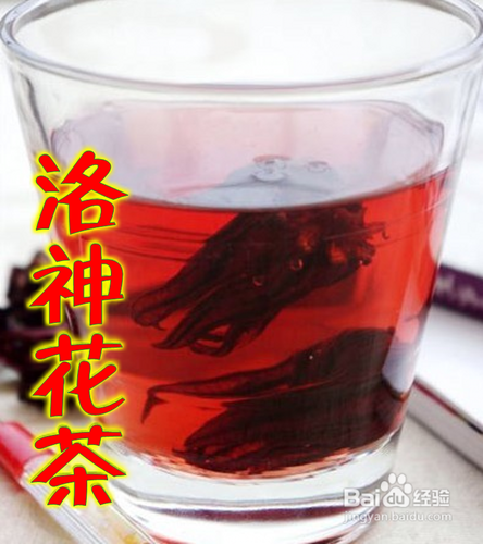 秋季喝什么茶比较好图片