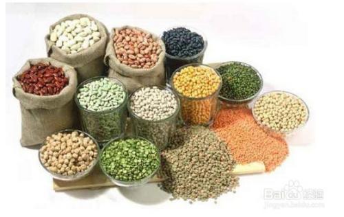 玉蜀黍是什么谷物图片