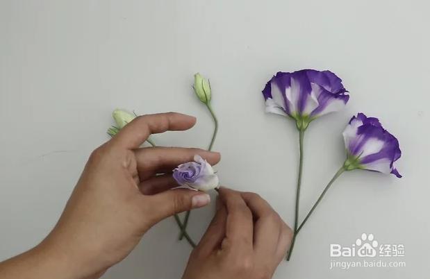 如何将真花做成永生花