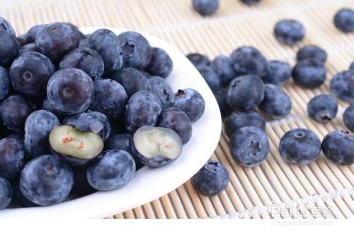 蓝莓种子种植方法图片