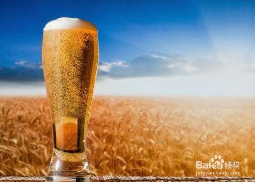 大麦是什么东西图片
