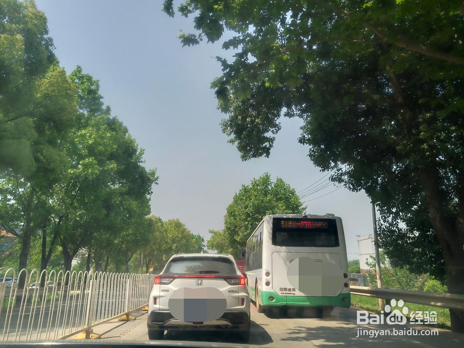 金龙水寨生态乐园旅游攻略
