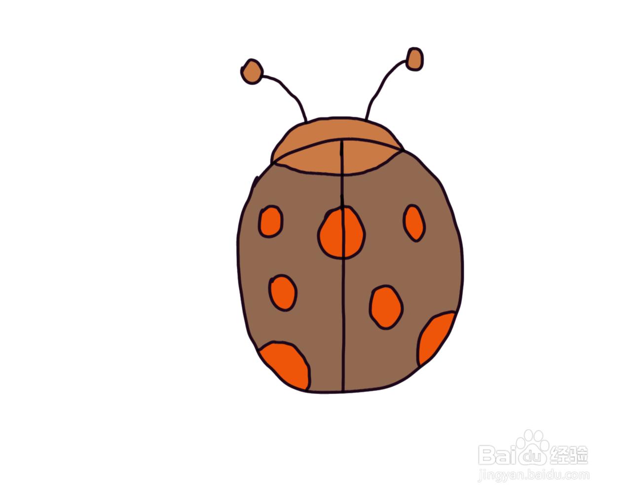 怎么画儿童彩色简笔画卡通动物七星瓢虫...