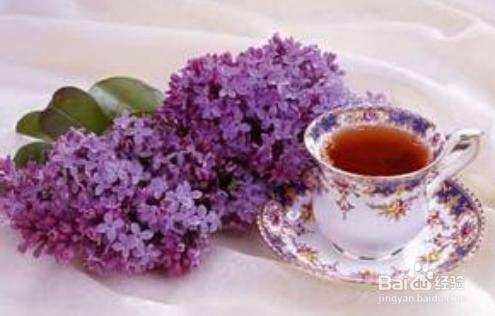 紫罗兰药用图片