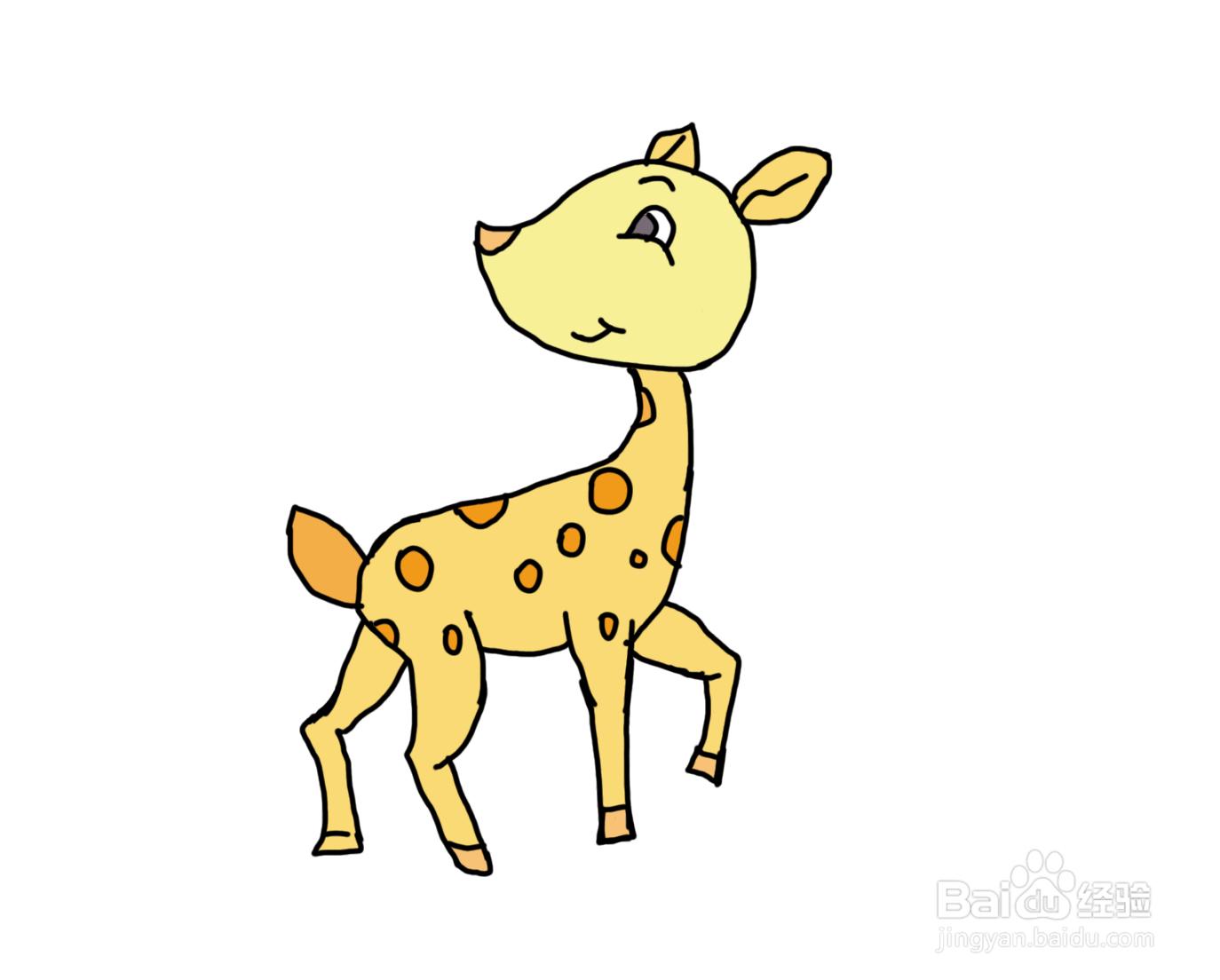 怎么画儿童彩色简笔画卡通动物小鹿?