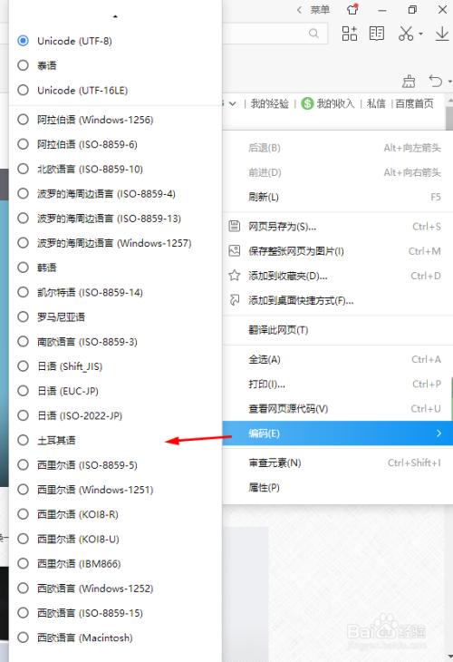 网站如何:怎样翻译网页-U9SEO