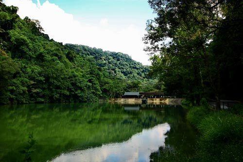 宝岛台湾主要特产图片