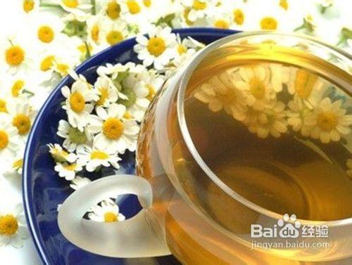 春季养生适合喝什么茶图片