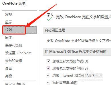 OneNote如何自定义词典内容?