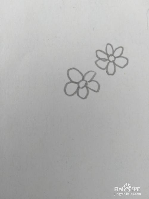 儿童简笔画路边的小野花