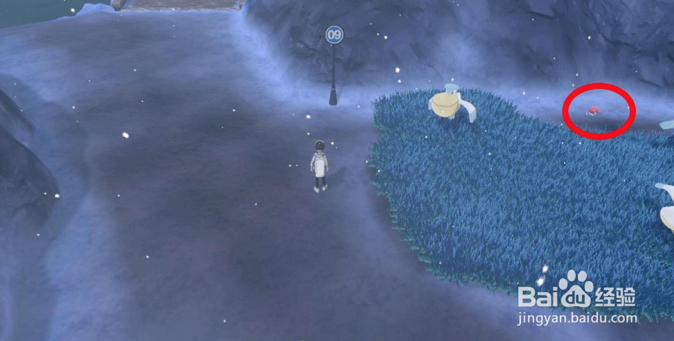 宝可梦剑盾9号道路攻略