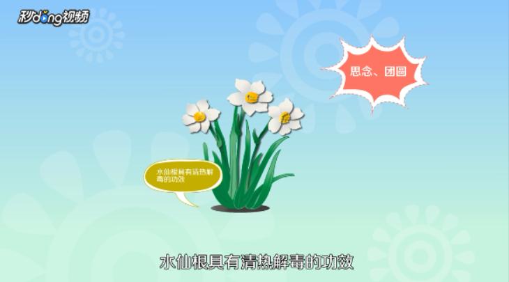 春天开的花有哪些?