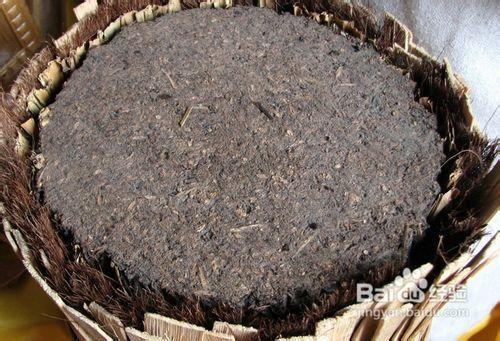 黑砖茶和茯砖茶功效图片